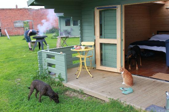 Kingthorpe Manor Farm: Porch, BBQ and animals!