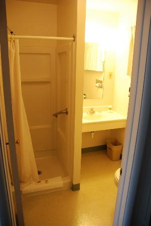 A Western Rose Motel: Shower and sink area