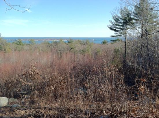 Ravenswood Park : An excellent view of Gloucester Harbor from a trail