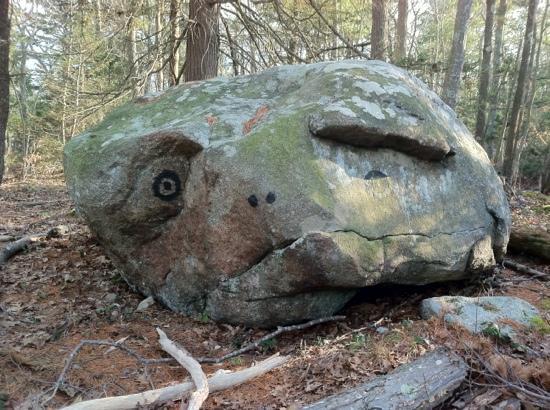 an ET boulder along a Ravenswood Park trail