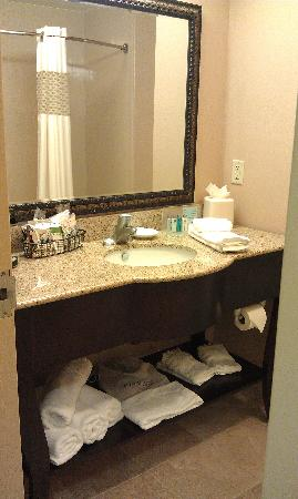 Hampton Inn & Suites Lakeland-South Polk Parkway: bathroom
