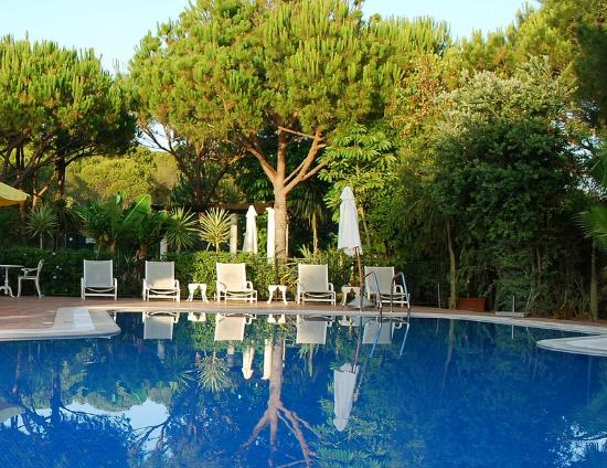 Quinta Jacintina Hotel: The pool