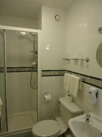 Lucan Spa Hotel: Bathroom