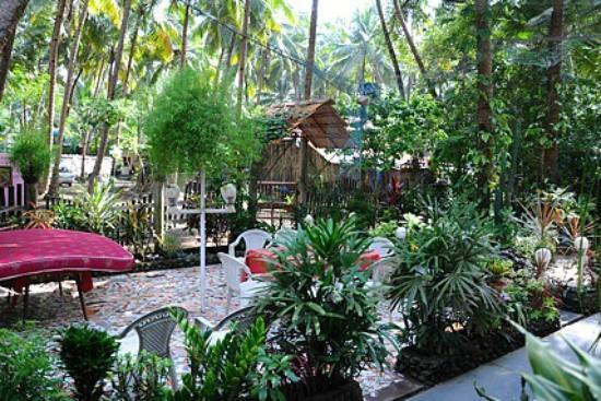 Zappia Cove Guest House : Zappia Cove Garden Sitout