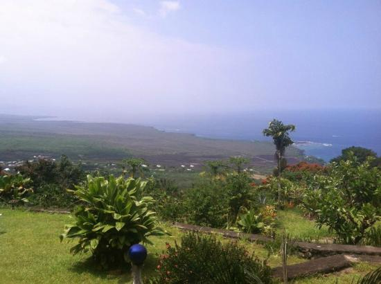 Ka'awa Loa Plantation: This is the view from the lanai, where I had breakfast every morning