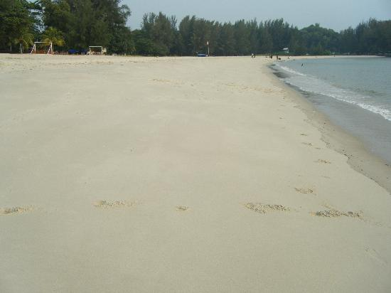 The Grand Beach Resort: Sandy beaches