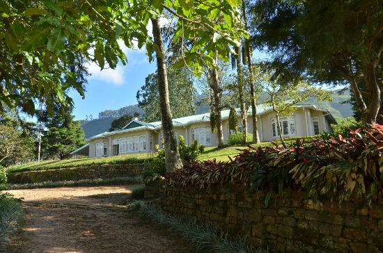 Ceylon Tea Trails : castlereagh