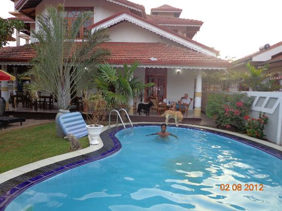 Serendib Guest House: The Pool,