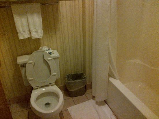 Miles City Hotel & Suites: bagno