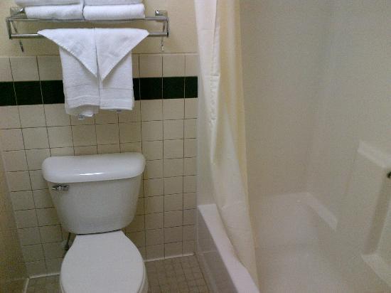 AmericInn Lodge & Suites Medora: bagno