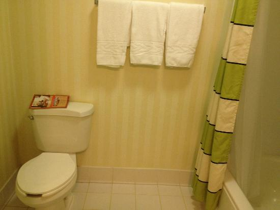 Fairfield Inn & Suites Chesapeake: bathroom