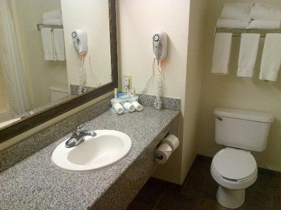 Holiday Inn Express & Suites Mt Rushmore / Keystone: bagno