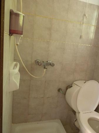 Victoria Hill Hotel: the shower and the toilet