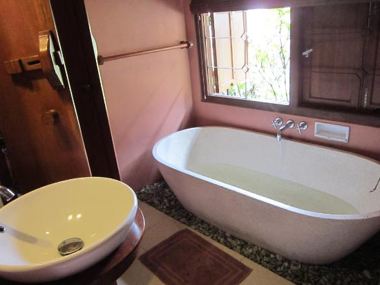 Strawberry Hill Hotel : bath tub