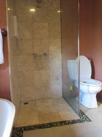 Strawberry Hill Hotel: shower in the bathroom