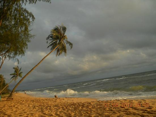 คาสเซีย คอจเทจ เดอะ สไปซ์ เฮ้าส์: ホテルのビーチ