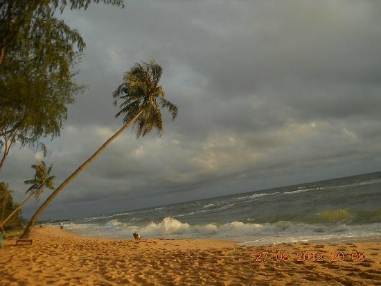 Cassia Cottage: ホテルのビーチ