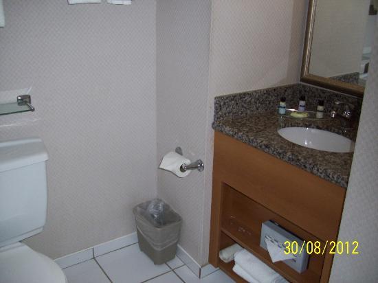 Sandman Hotel Calgary City Centre: Bathroom view