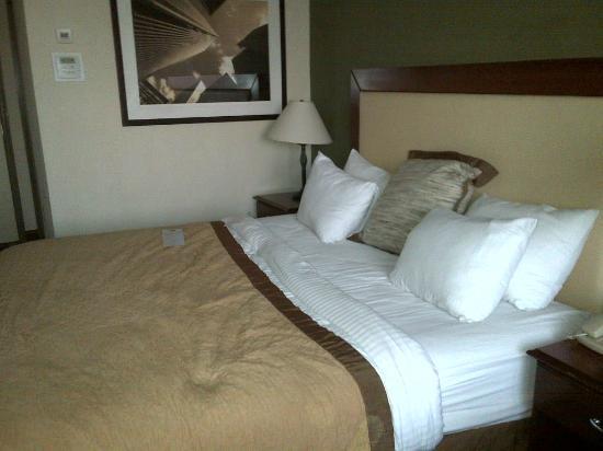 Wyndham Philadelphia - Mount Laurel : Wonderful bed