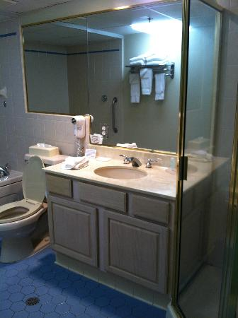 Quality Inn & Suites Beachfront Ocean City: Sink