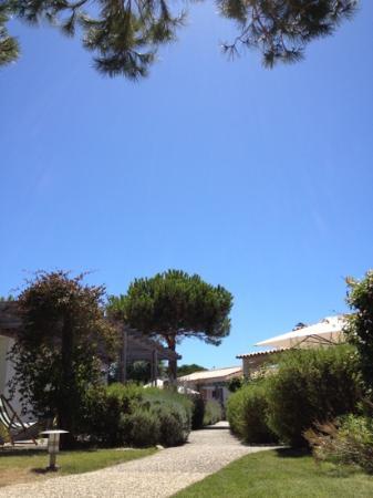 La Villa Passagere Hotel : le jardin , où donnent les chambres