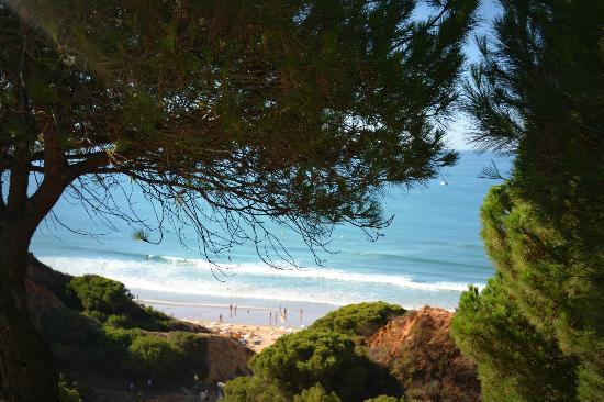 Praia dos Olhos de Água: Praia