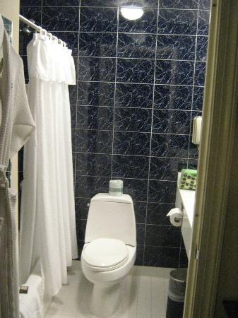 菲茨帕特里克中央大酒店照片