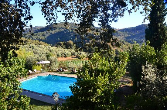 Vignamaggio: Main Pool
