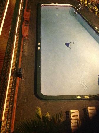 Rodeway Inn Miami Airport: The Pool Area