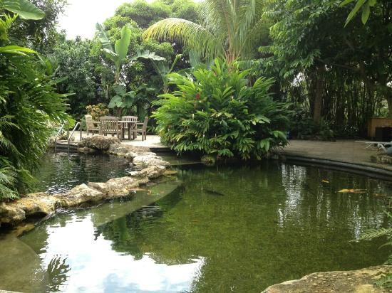 Sundy House: Garden pool