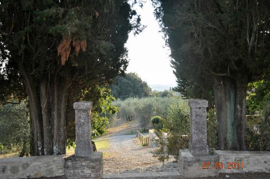 Agriturismo Castel di Pugna Image