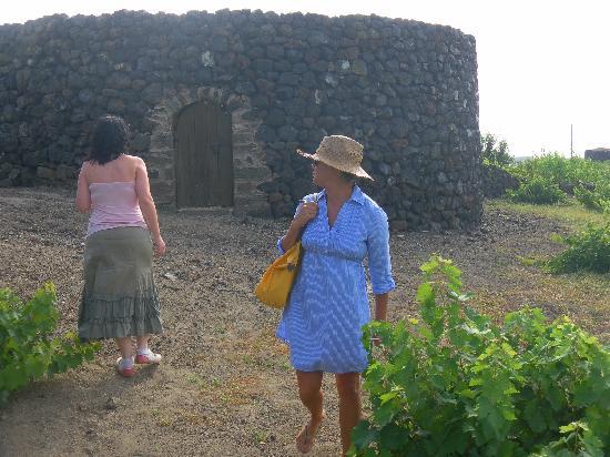 Giardino Pantesco: Con la Guida marsalese