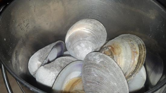 Hooper's Crab House: Clams