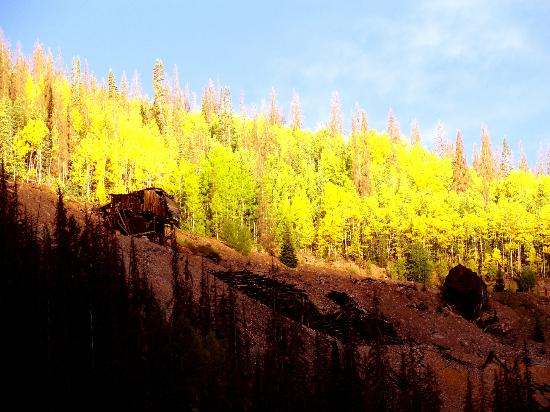 Bachelor Loop: Hillside above mining ruins
