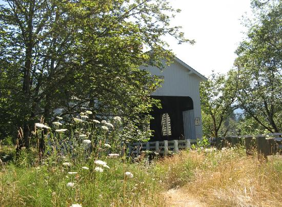 Cottage Grove Covered Bridge Tour Route: Dorena Bridge