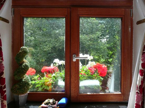 Collier's Bed & Breakfast: looking out through bedroom window