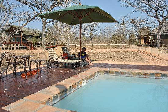 Tydon Safari Camp: Pool at camp-refreshing in the middle of the day!