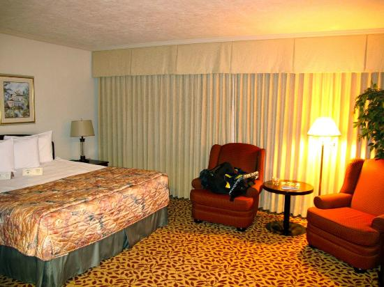 Royal Scot Hotel & Suites : Large comfortable king room