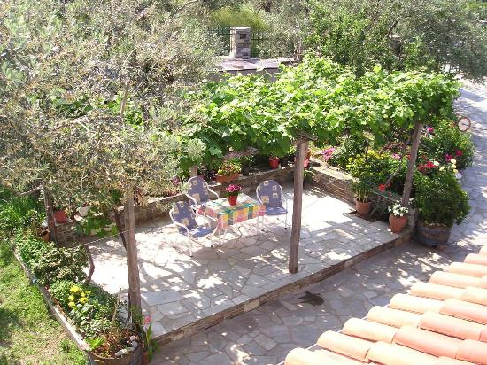 Felitsia Apartments & Studios: Garden