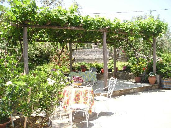 Agios Ioannis, اليونان: Garden