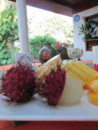 Casa Batsu: Breakfast