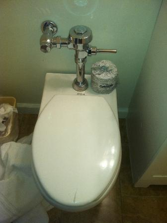 Vineyard Harbor Motel: The classy toilet