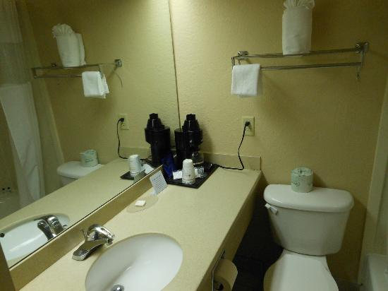 BEST WESTERN Tampa: bathroom