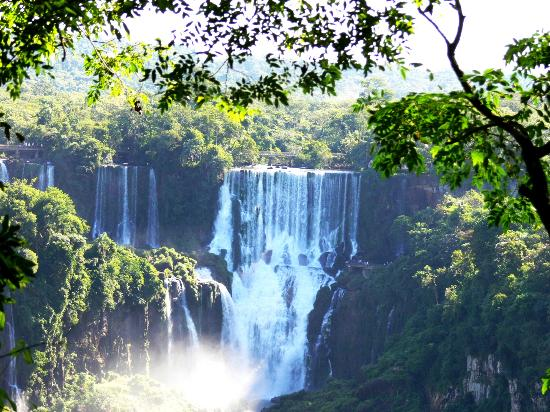 Iguazu Falls: estre las ramas