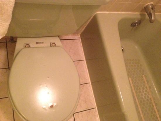 Gas Lite Motel: Bathroom at Gas Lite Inn