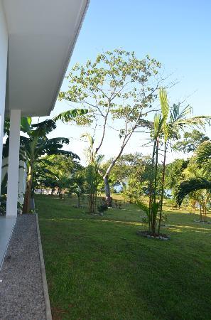 Hotel Bocas del Mar: Room