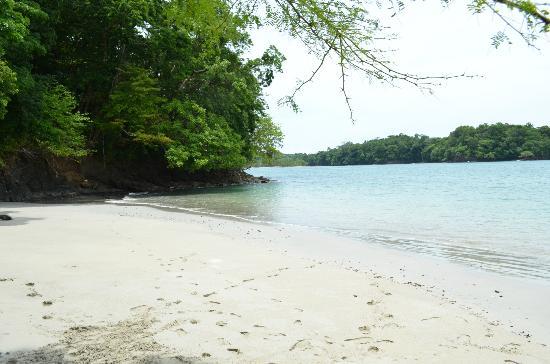 Hotel Bocas del Mar: Tour