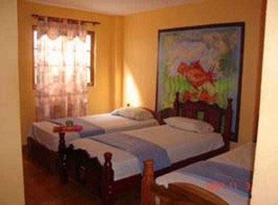 Hotel Cayo Zapatilla: Habitación