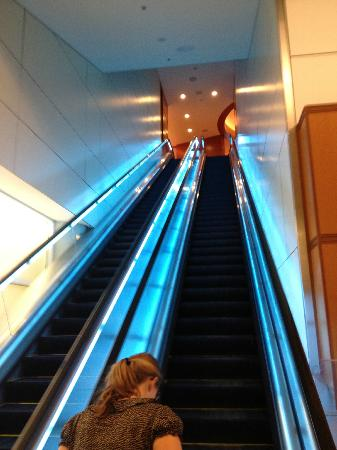 Escalator to the Grand Hyatt DFW
