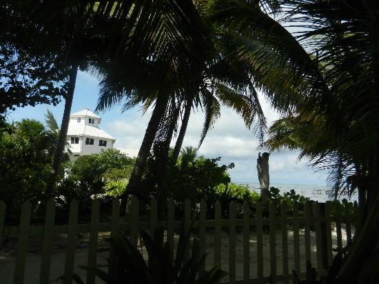 Barefoot Beach Belize: Looking out from the hammock